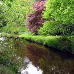 Self Catering Cornwall Spring