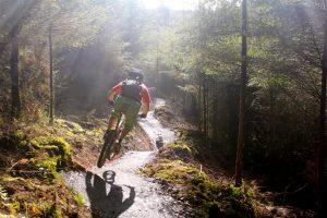 Cardinham woods mtb